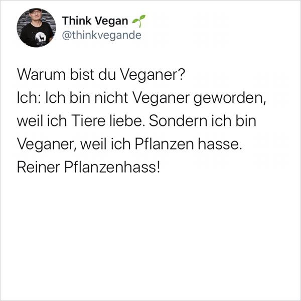 Warum bist du Veganer?